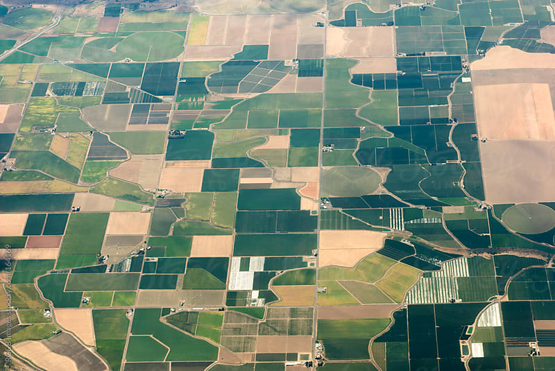crop fields  by RG&B Images for Stocksy United