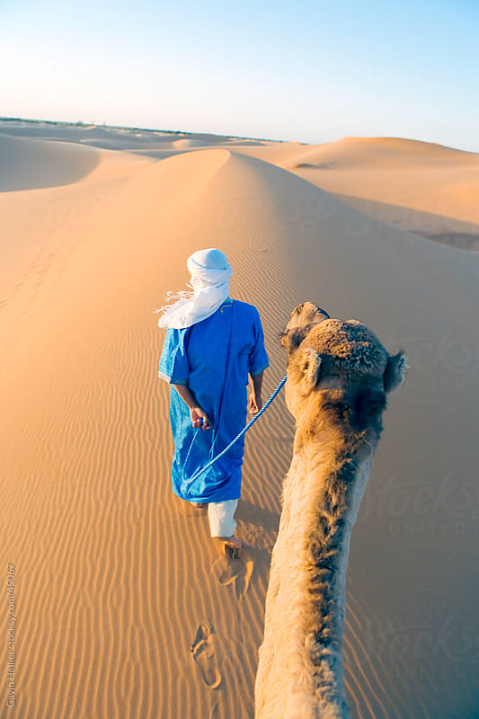 Berber man walking with his camel, Erg Chebbi, Sahara Desert, Merzouga, Morocco, North Africa, Africa by Gavin Hellier for Stocksy United