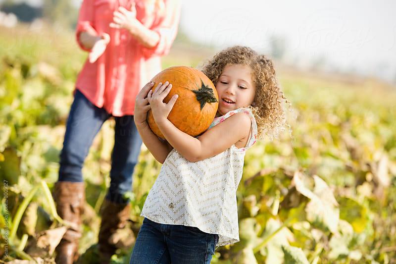 Pumpkins: Girl Carries Heavy Pumpkin by Sean Locke for Stocksy United