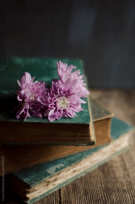 flowers and books by Crissy Mitchell for Stocksy United
