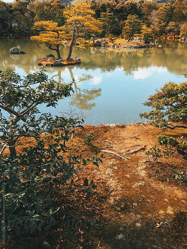 Japanese Garden With Lake on Sunny Day by Julien L. Balmer for Stocksy United