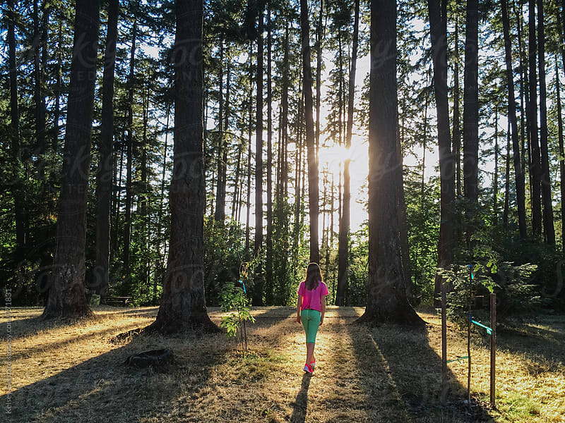 A young girl walks into a forest of tall pines while the sunlight streams through. by Kelsey Gerhard for Stocksy United
