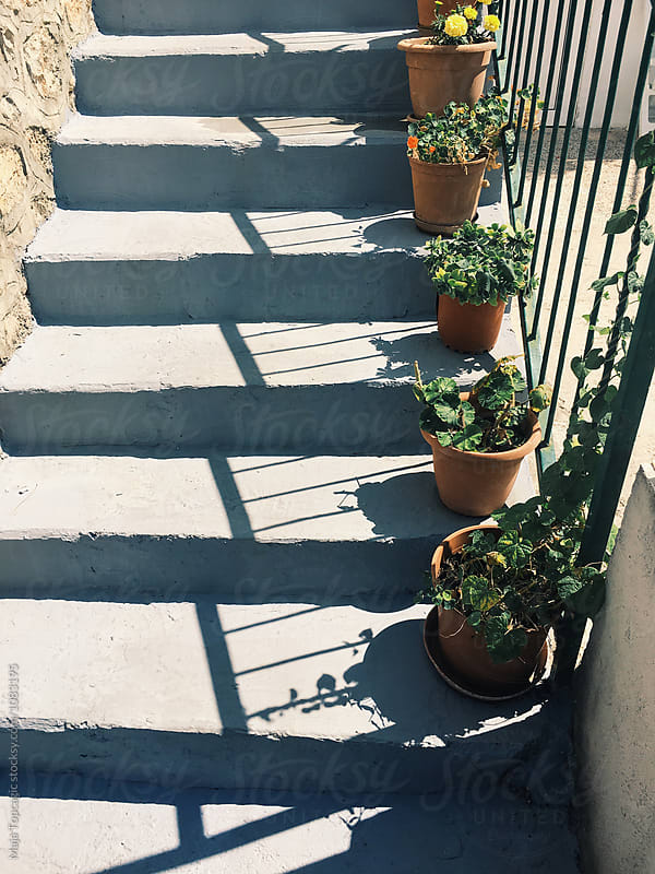 Shadows of plants on the stairs by Maja Topcagic for Stocksy United