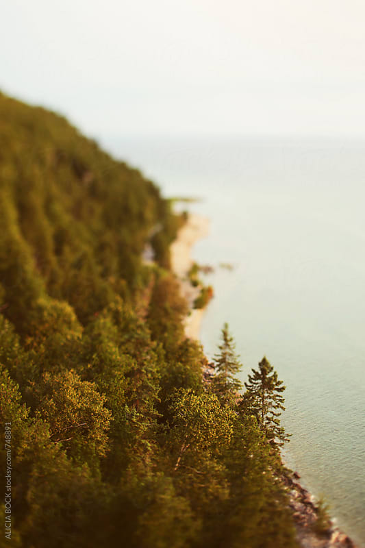 Looking Down Over A Wooded Coastal Area by ALICIA BOCK for Stocksy United