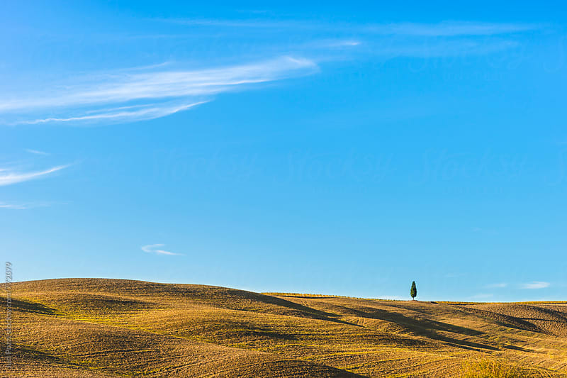 Tuscany landscape by Juri Pozzi for Stocksy United