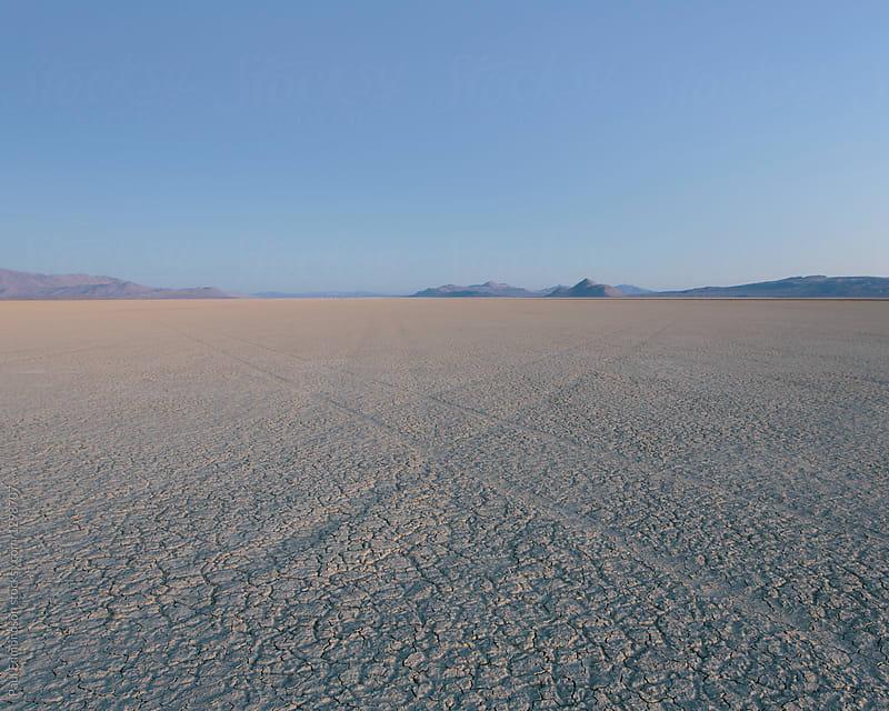 Black Rock Desert at dawn