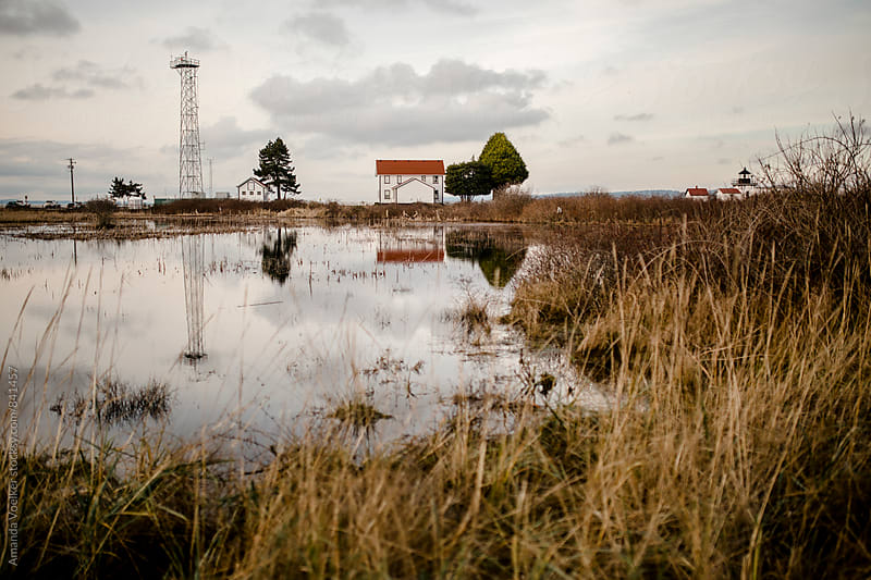 Scene of Wetlands and an Old Lighthouse by Amanda Voelker for Stocksy United