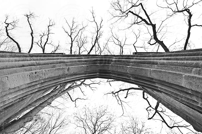 Archway and  Branches by Urs Siedentop & Co for Stocksy United