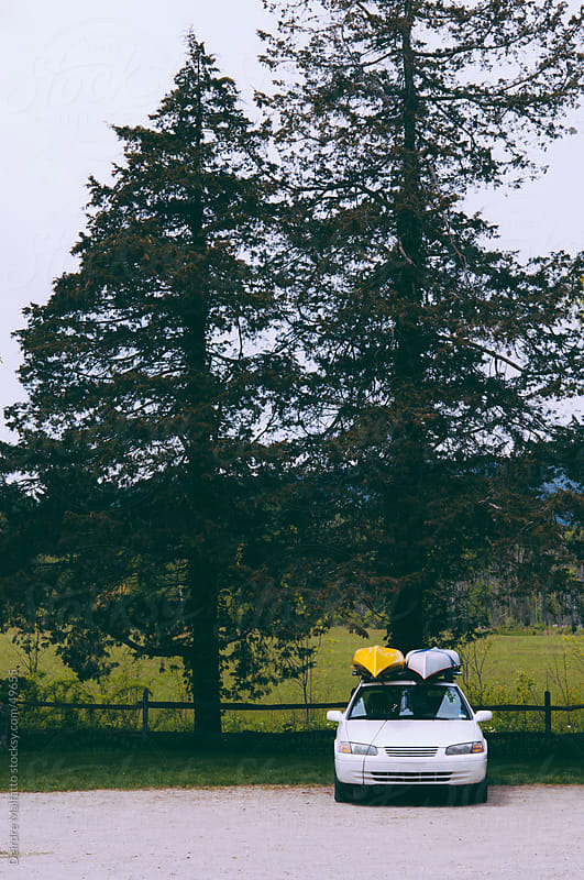 Two kayaks on a car roof under pine trees by Deirdre Malfatto for Stocksy United