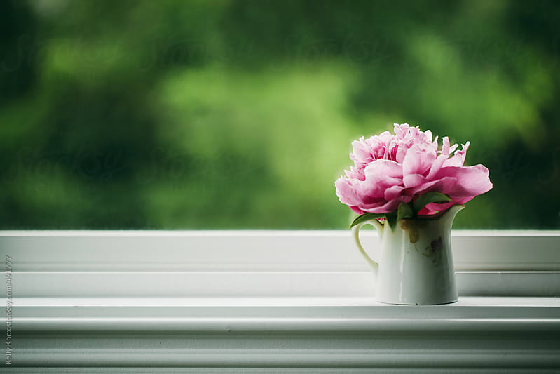 pink peony sitting on a window sill by Kelly Knox for Stocksy United