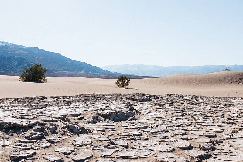 dry desert cracked mud in death valley by Jesse Morrow for Stocksy United