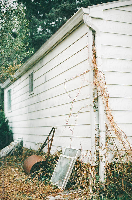 Old Garden Shed in Backyard. by Sarah VanTassel for Stocksy United