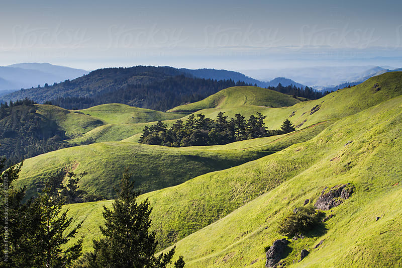 Rolling Hills in Marin by Nathan French for Stocksy United
