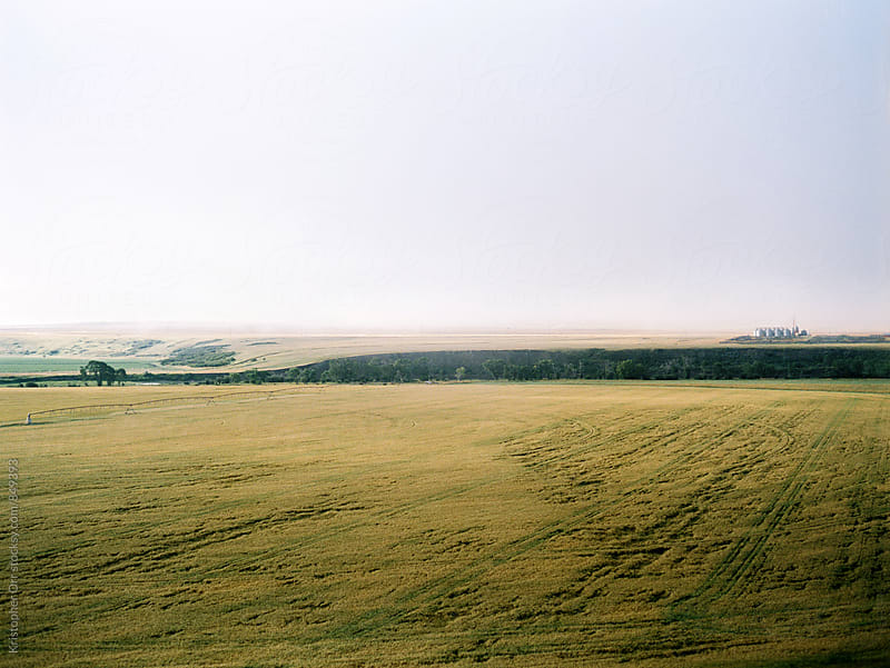 Farmers Field in Alberta by Kristopher Orr for Stocksy United