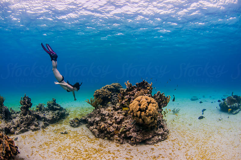 WIde landscape shot of coral reef with woman snorkelling by Caine Delacy for Stocksy United