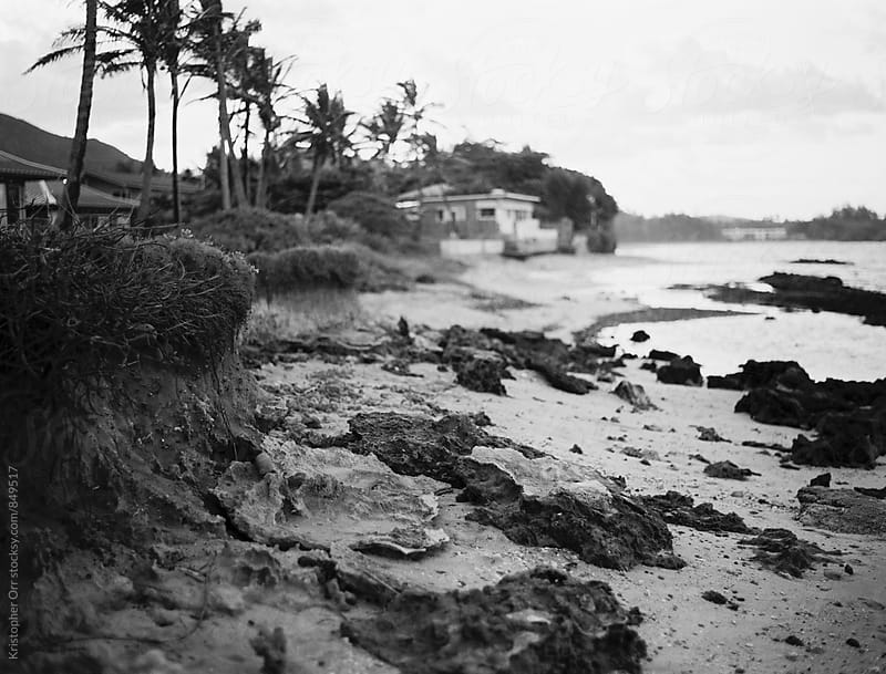 Beach Scene in Hawaii by Kristopher Orr for Stocksy United