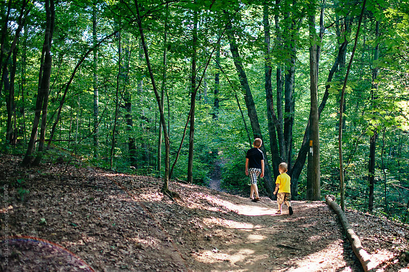 two boys walking in the woods in the summer by Sarah Lalone for Stocksy United