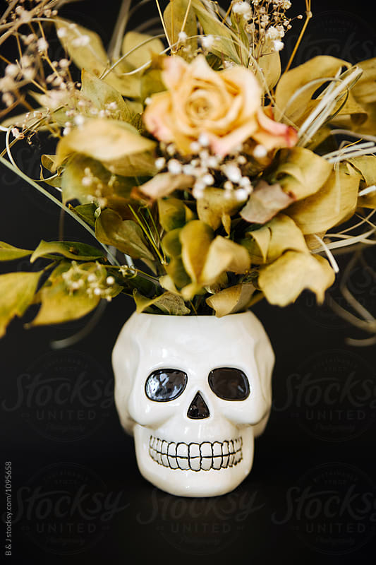 Ceramic skull with dried flowers on a black background by B & J for Stocksy United
