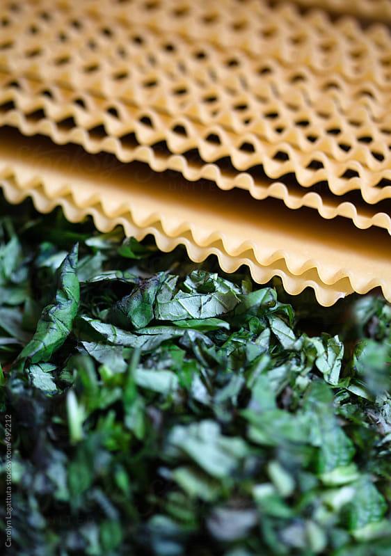 Lasagna pasta and fresh cut basil by Carolyn Lagattuta for Stocksy United