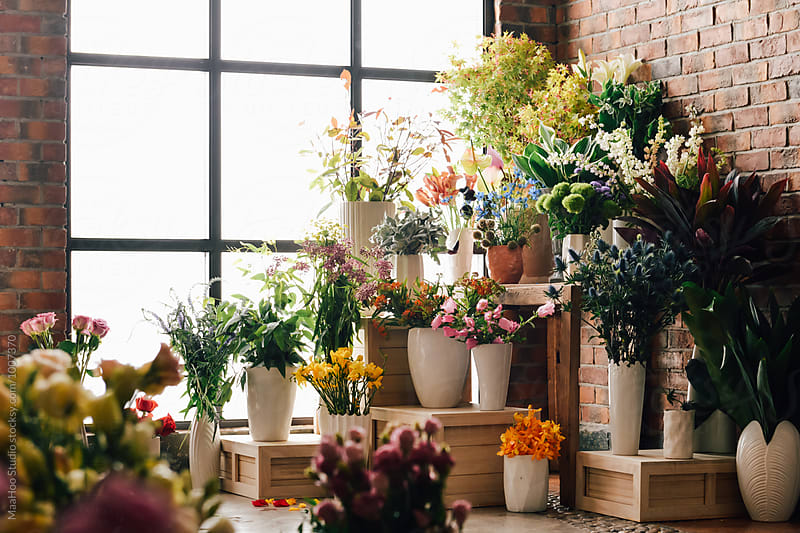 Fresh flowers in store by Maa Hoo for Stocksy United