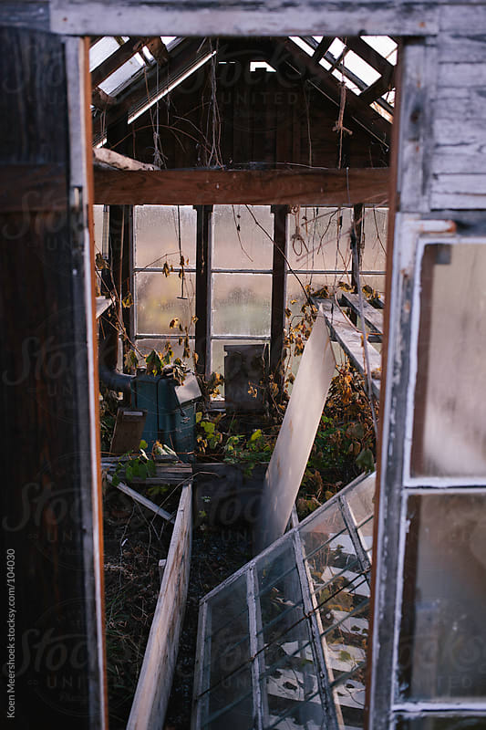 The inside of a small abandoned greenhouse by Koen Meershoek for Stocksy United