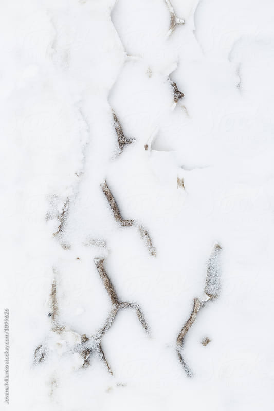Trace of tire tracks in the snow by Jovana Milanko for Stocksy United