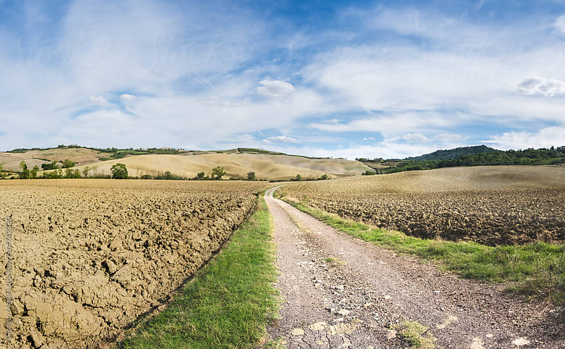 Dirt Road in the Tuscan Countryside, Val D'Orcia by Giorgio Magini for Stocksy United