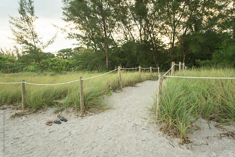 A Lined Pathway Leading To The Beach With Shoes by Alison Winterroth for Stocksy United