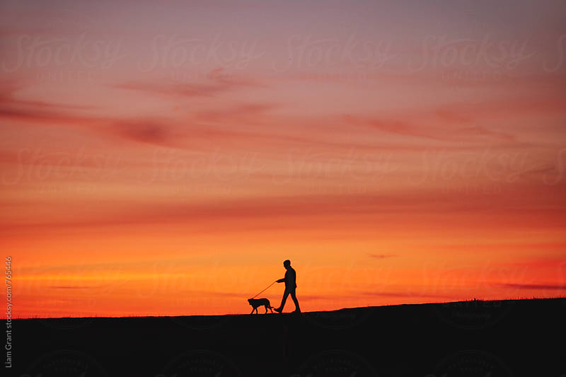 Female walking her dog, silhouetted at sunset. Wales, UK. by Liam Grant for Stocksy United