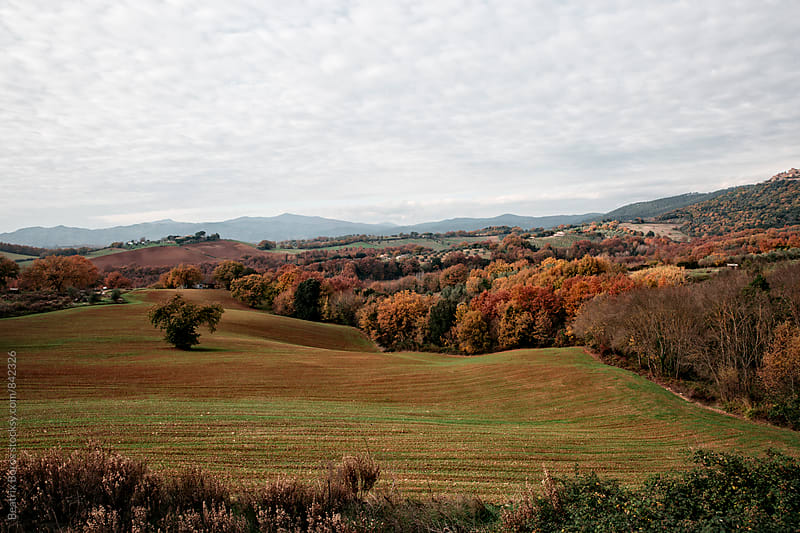 Tuscan hills and nature in Autumn by Beatrix Boros for Stocksy United