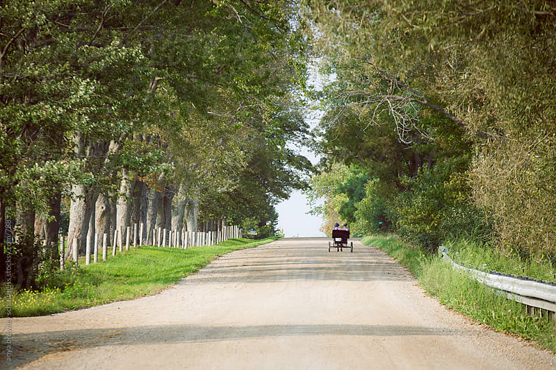 A Mennnonite wagon in the distance driving down a long country road with trees on either side by anya brewley schultheiss for Stocksy United