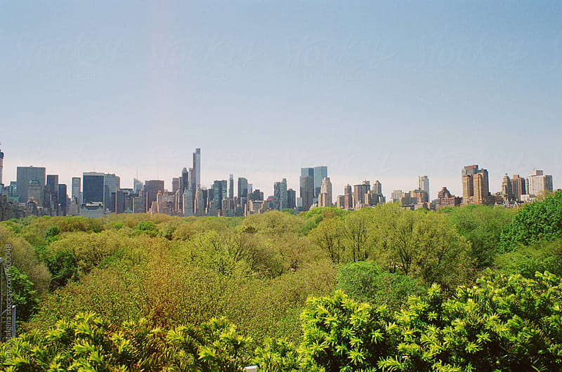 A film photo of New York City Skyline and Central Park by Anna Malgina for Stocksy United