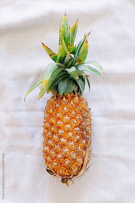 Big colorful pineapple by Toma Evsiukova for Stocksy United