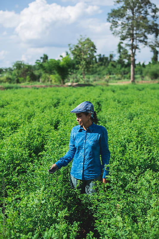 Blue woman in the indigo plantation by Chalit Saphaphak for Stocksy United
