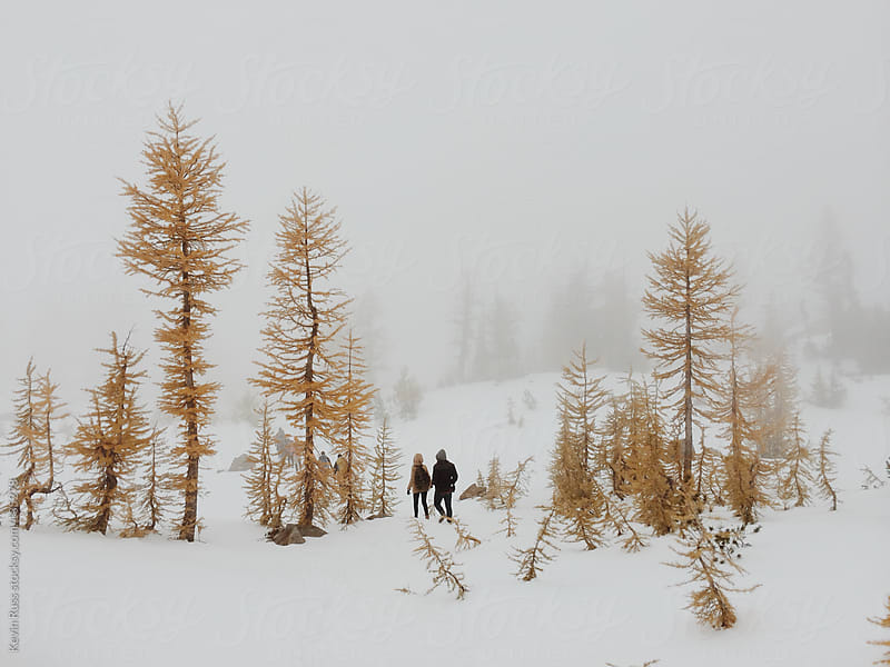 Couple Walking Through Larch Trees by Kevin Russ for Stocksy United