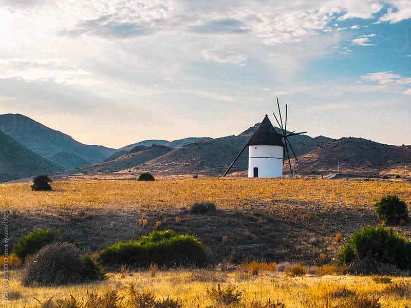 Landscape with windmill on el Cabo de Gata, Almeria. Spain. by BONNINSTUDIO for Stocksy United