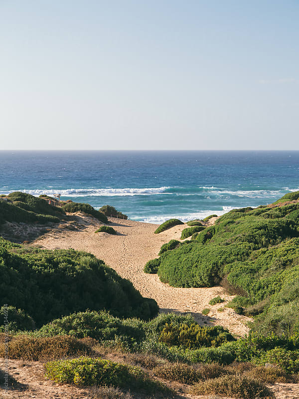 Landscape with sea and sand dunes by michela ravasio for Stocksy United