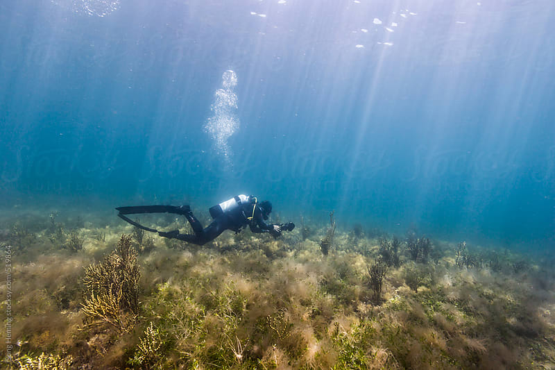 scuba diving in cold water by Song Heming for Stocksy United
