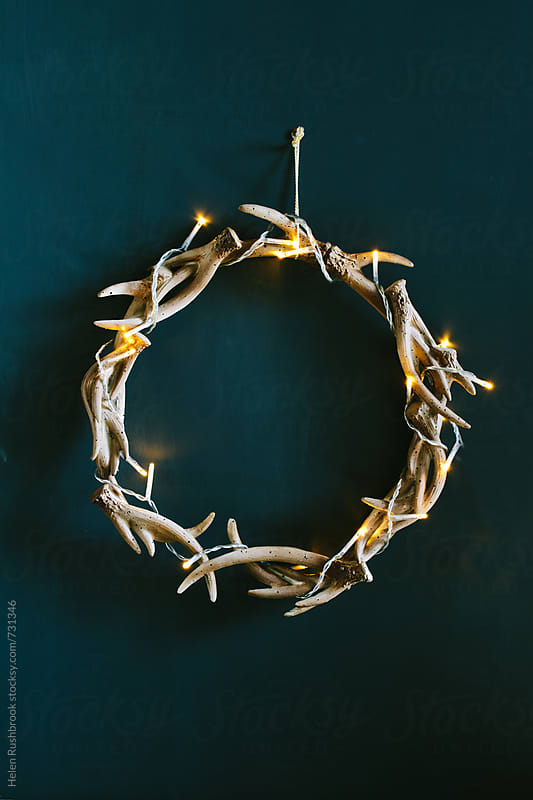 Antlers and fairy lights by Helen Rushbrook for Stocksy United