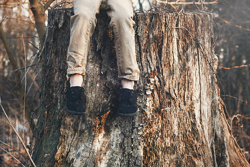Legs of a Young Boy Hanging Over a Tree Stump by Kevin Keller for Stocksy United
