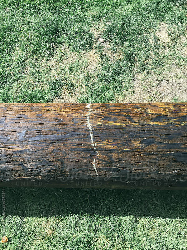 Wood utility pole on grass by Paul Edmondson for Stocksy United