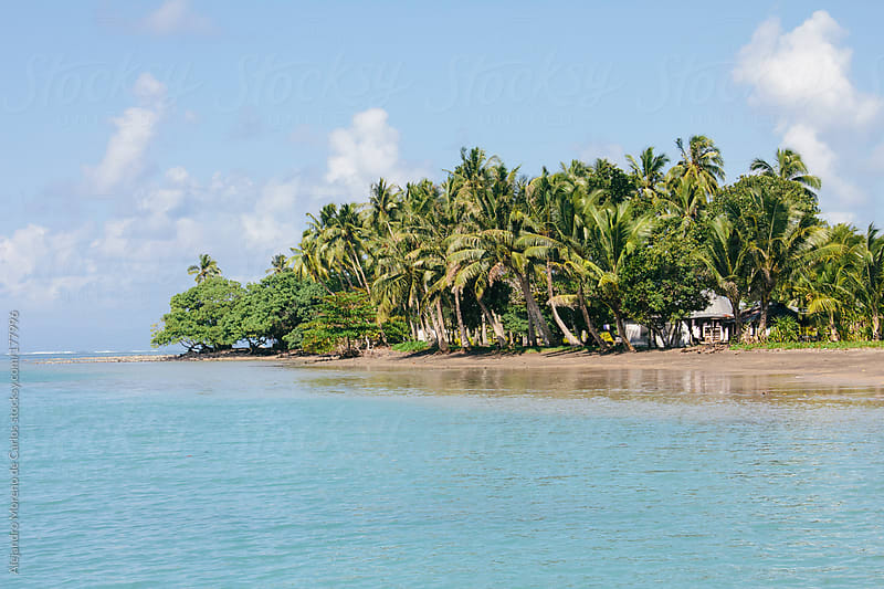 Beach with palm trees on exotic tropical island with turquoise sea by Alejandro Moreno de Carlos for Stocksy United