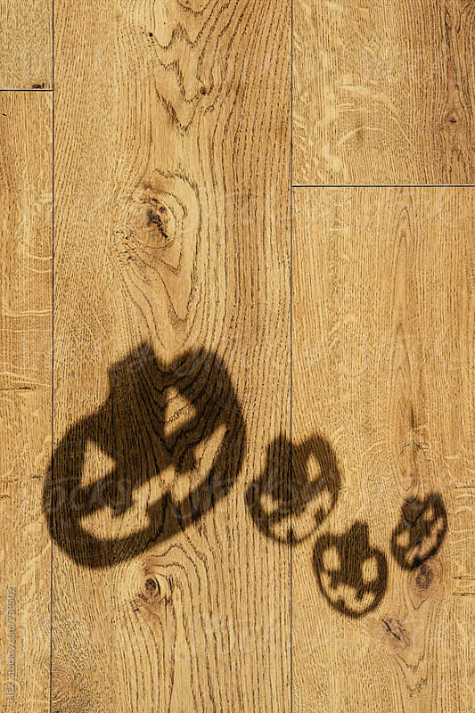 Halloween Pumpkin Shadows on the Wooden Floor by HEX . for Stocksy United