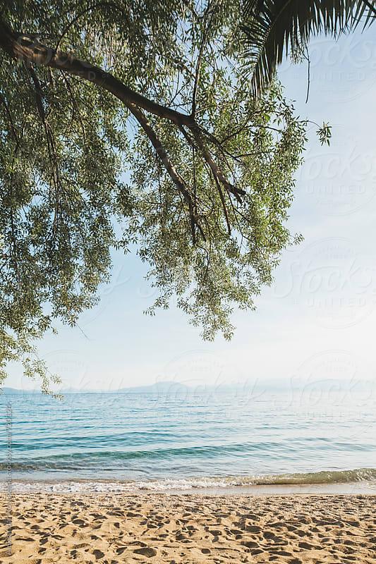 Landscape of greek seascape with trees infront by Aleksandar Novoselski for Stocksy United