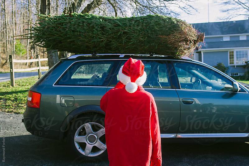Child Helping to Load Christmas Tree on Car by Raymond Forbes LLC for Stocksy United