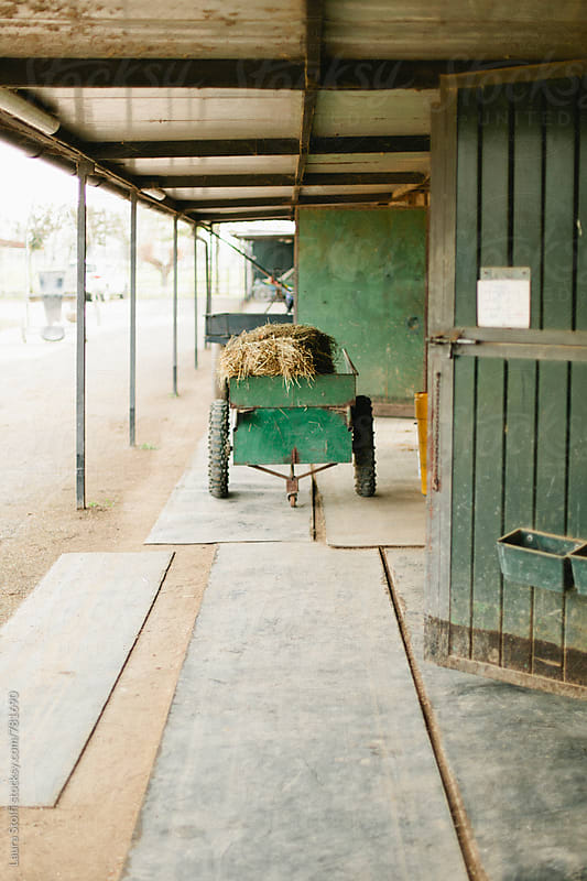 Green cart full of dried hay in front of horses paddocks by Laura Stolfi for Stocksy United