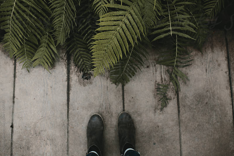 feet standing on wood floor by green ferns by Nicole Mason for Stocksy United