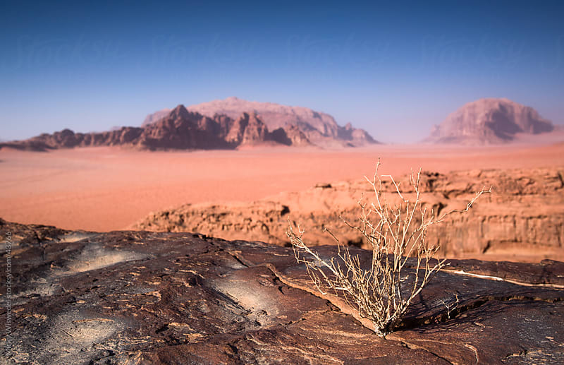 Wadi Rum desert Jordan by Micky Wiswedel for Stocksy United