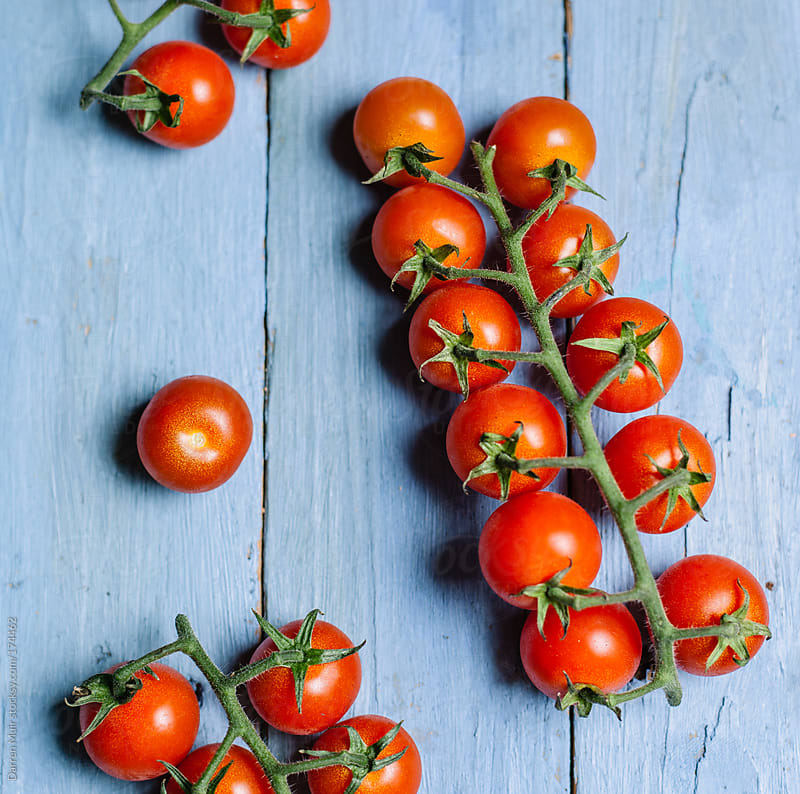 Piccolo Tomatoes. by Darren Muir for Stocksy United