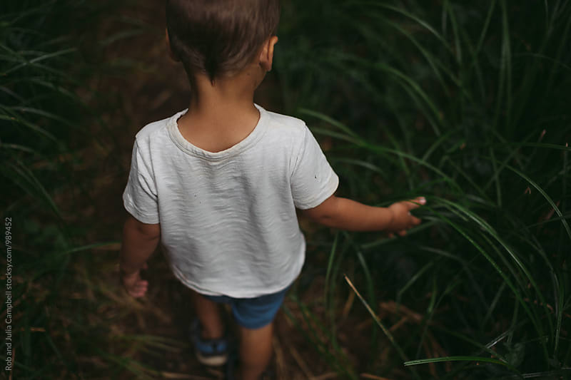 Young boy exploring the forest alone - touching grasses by Rob and Julia Campbell for Stocksy United